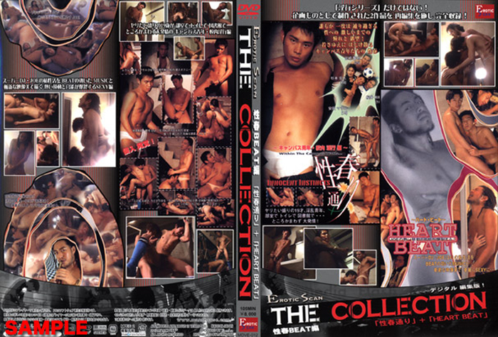 淫行シリーズ THE COLLECTION 性春BEAT編(DVD)